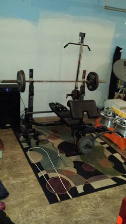 Phoenix Weight Bench Weights (300lbs) - $290 (Metairie)