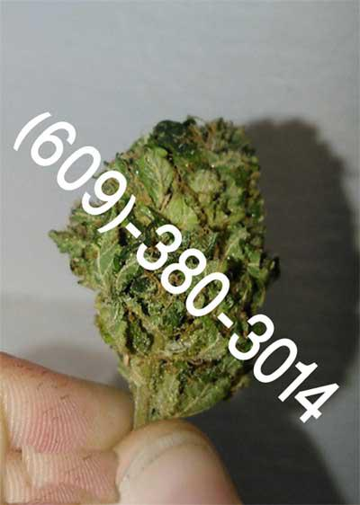 100  Make you Energetic Happy Quality Marijuana