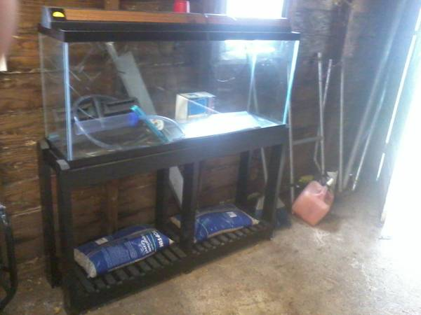 55 gallon fish tank stand, light and accessories - $200 (Metairie,La)