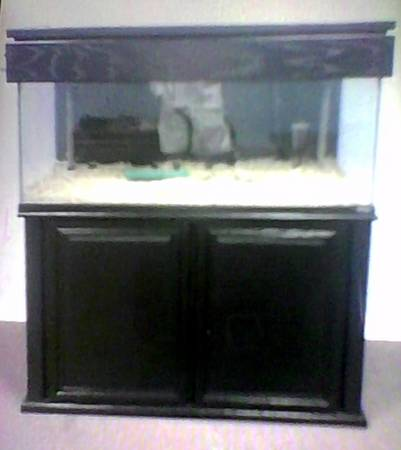 Beautiful 75 Gallon Oceanic Fish Tank - $400 (Kenner)
