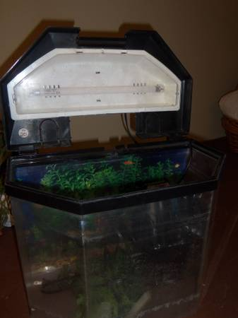2.5 gallon Desktop Fish Tank kit - $15 (Kenner )