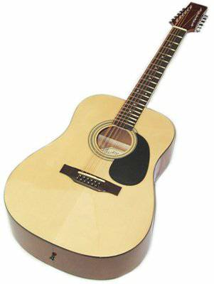 12 String Acoustic Guitar - $100 (Westbank)