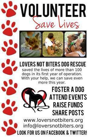 DOG LOVERS JOIN US    NEW ORELANS AREA