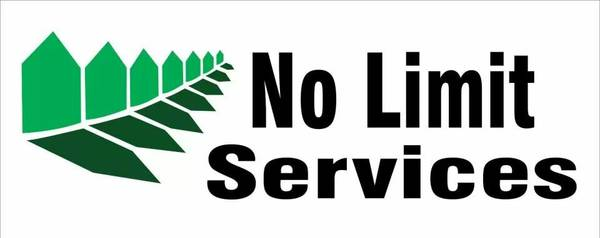 No Limit Moving Services  amp  More     San Angelo