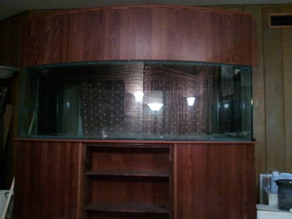 400 Gallon Bow Front Aquarium -   x0024 4950  Mertzon  TX
