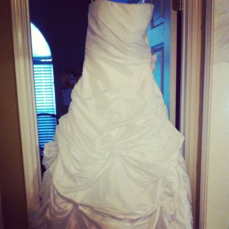 Beautiful wedding dress skirt hoop - $600 (San angelo, tx)