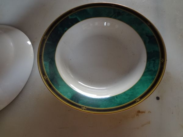 Jade Garland Retroneu Fine China Set - $100 (San Angelo, TX)