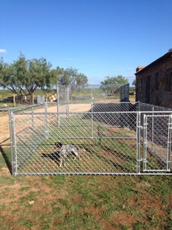 Dog Kennels 10 x 10 x 4 - $255 (Abilene)