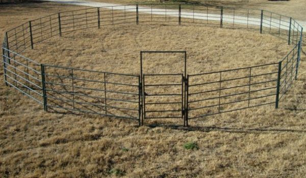 Round Pens, Cattle Panels, Arenas - $37 (Ballinger and surrounding areas)