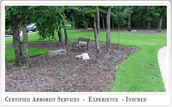 Experienced Arborist Needed  Tyler  TX