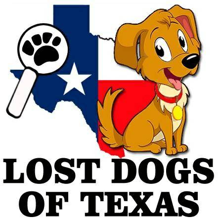 WE CAN HELP IF YOU VE LOST OR FOUND A DOG   Texas