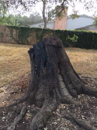 Stump removal  ne san antonio