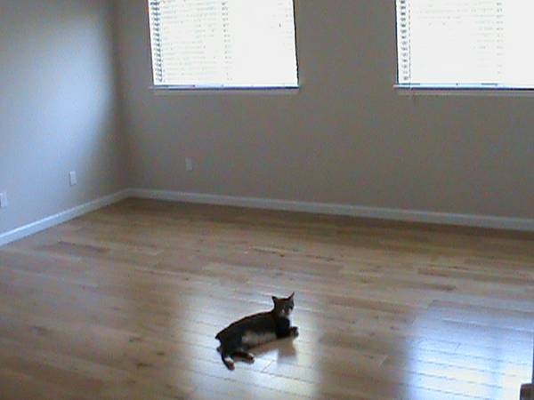 - $500 367ftsup2 - Room for Rent with Private Bathroom (NW(Potranco 1604))