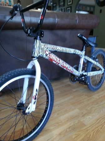 Intense Pro XL BMX Racing Bike - $275 (South S.A.)