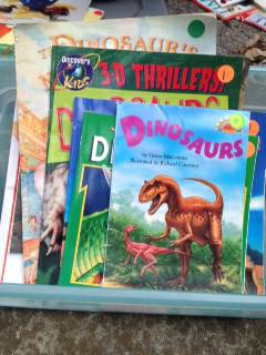 picture books for classroom  new braunfels
