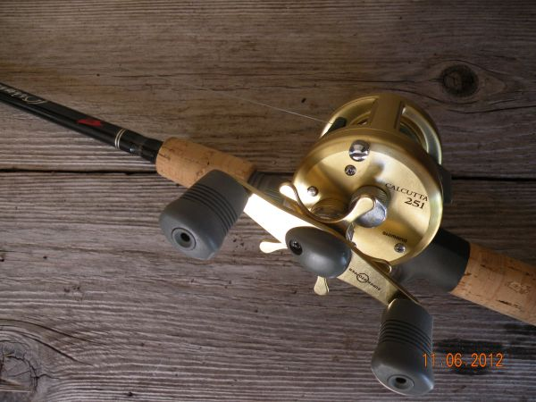 Shimano Calcutta 251 Left-Handed Reel Falcon Rod (north)