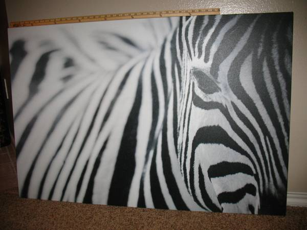 Ikea Pjatteryd Zebra 47x31 Photo Canvas Wall Art - $60 (north central)