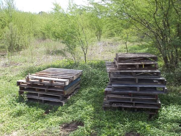 free wooden pallets great for picture frames and crafts (schertz)