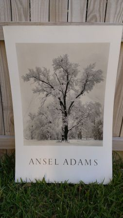 Ansel Adams Framed Prints - $10 (BittersBlanco)