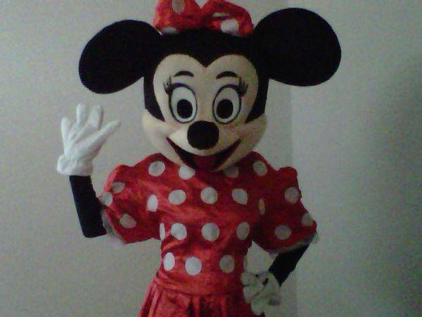 Adult Mickey and Minnie mouse costume for rent Perfect for Parties - $40 (Stone Oak)
