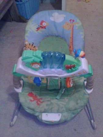Fisher price rainforest bouncer - $20 (blanco and west Ave )