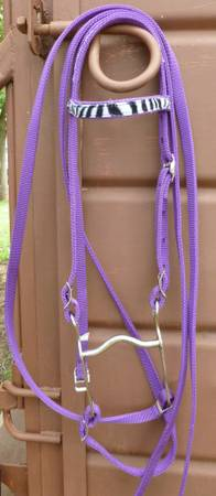 Cute purple pony bridle set with Zebra browband and asst. other tack - $15 (Seguin)