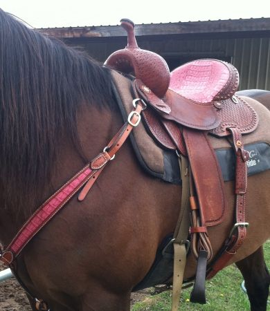 Double J Pozzi Barrel Saddle - $2600 (Kerrville)