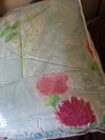Twin Bedspread, Sheets, Pillow, etc. (for girl) - $1 (Kyle Seale and 1604)
