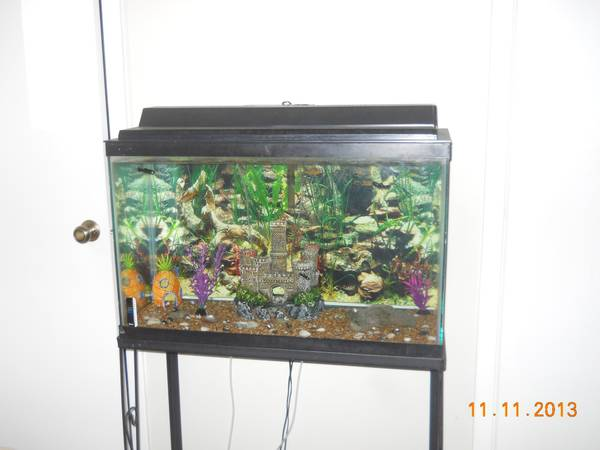30 GALLON FISH TANK W STAND (EVERYTHING INCLUDED) - $100 (CONVERSE)