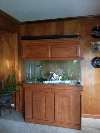 Aquarium 90 Gallons, with Cabinet - $900 (San Antonio)