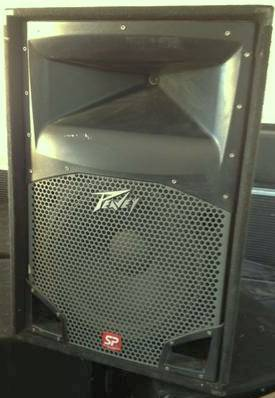 Peavey SP2 speakers (2) - $300 (north central SA)