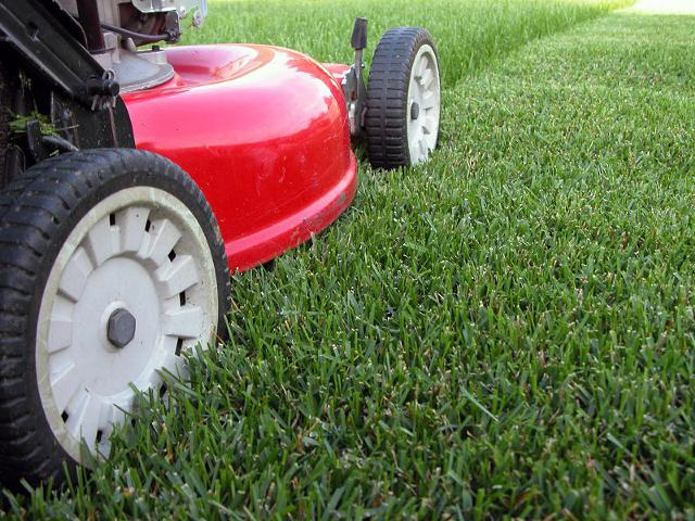Inexpensive Lawn Mowing Fast Service Get Your Yard Ready for that Fourth of July Barbecue