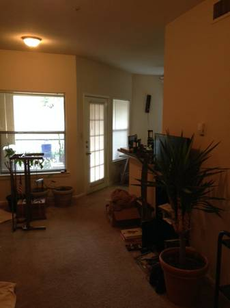 x0024 915   1br - Large 1 bdrm 1 bath- best bus route- free coffee and so much more-   San marcos