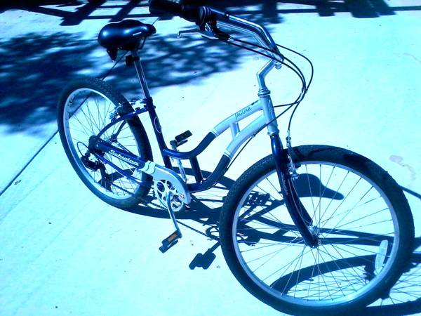 Schwinn Jaguar Girls Cruiser Bicycle - $125 (Wimberley)