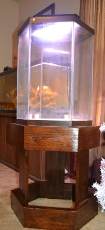 Hexagon fish tank with custom made stand - $50 (San Marcos)