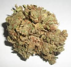 100 marijuana for sale asap 502 632-3751
