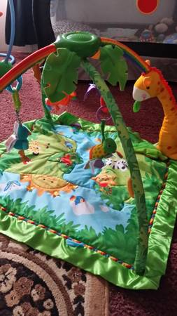 rainforest play gym -   x0024 20  bossier