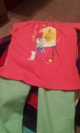 28 shirts for 2t and 3T Girl - $40