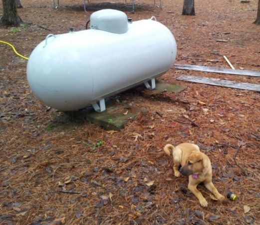 200 gallon propane tank stonewall farm garden - Craigslist watertown ny farm and garden ...