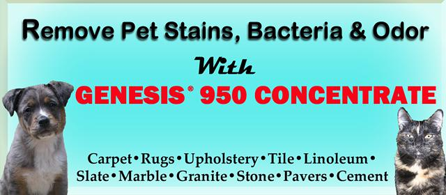 $42, Remove Pet Stains Odors - Genesis 950