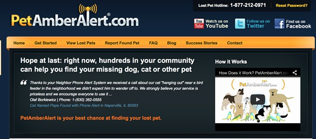 Amber Alert lost pet finder for your dog or cat or bird