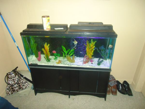 FISH TURTLE TANK - 55 Gallons (Texarkana)