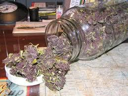 120  medical legit marijuana contact or txt 1-213-375-4795