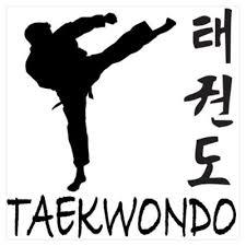 Bilingual Tae Kwon Do Karate Class