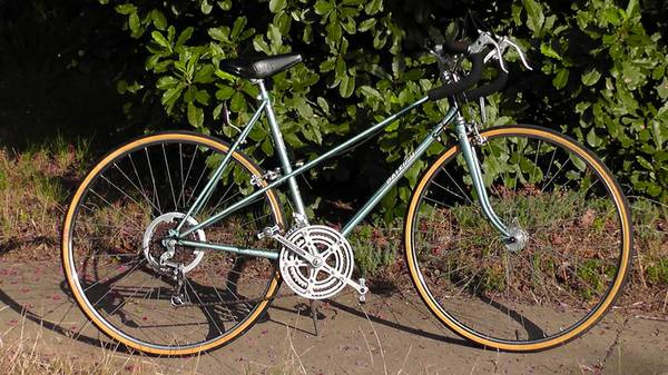 Raleigh Record Ace, 12-speed mixte road bike - $225 (Haltom City)