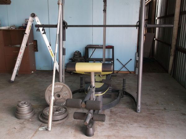 PROFORM WEIGHT MACHINE WEIGHTS - $425 (DENISON)
