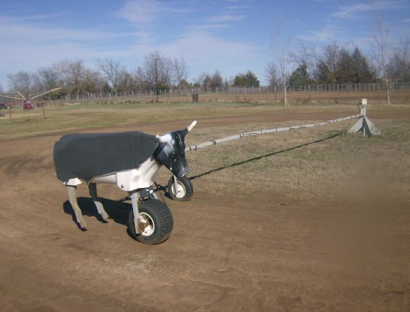 Buford Roping Dummy For Sale