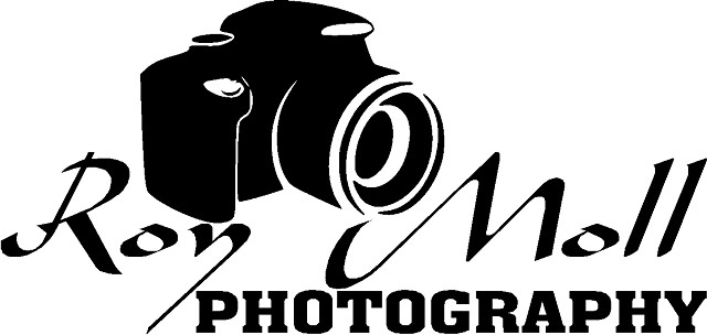 Photographer  GREAT RATES  Family or Adult  My Studio or Your Place
