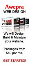 Professional Website Design  15 Years Experience  www Awepra com