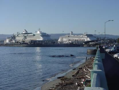 $99 1br - Yummy Plum Dumplings, Gingerbread CottageBB, by ferries, wifi, eco (Uptown Victoria, ocean, AirportShuttle)